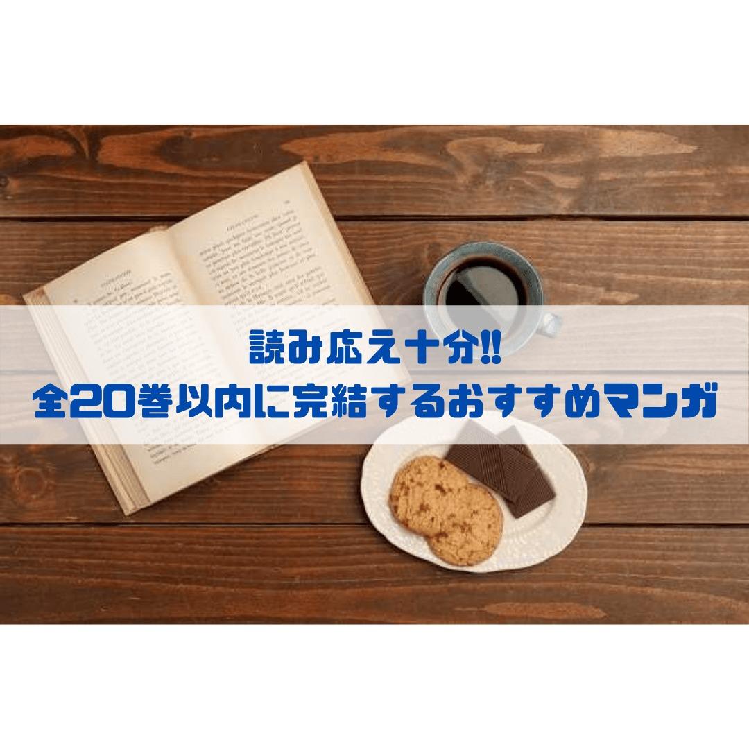 読み応え十分!! 全20巻以内に完結するおすすめマンガ